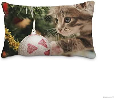 Standard Festival Decorative Pillowcases Animal Ornaments Cat Pillow Cover Design 16x24inch(Twin Sides)Home