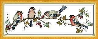 YEESAM ART New Cross Stitch Kits Advanced Patterns for Beginners Kids Adults - Birds Red Fruit Tree - DIY Needlework Wedding Christmas Gifts (Bird G, Stamped)