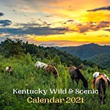 Kentucky Wild & Scenic Calendar 2021