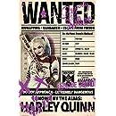 Amazon.com: Traje de Harley Quinn Bat, Suicida Squad ...