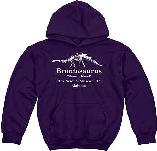 Retro Brontosaurus Stranger Alabama: Youth Hoodie Sweatshirt