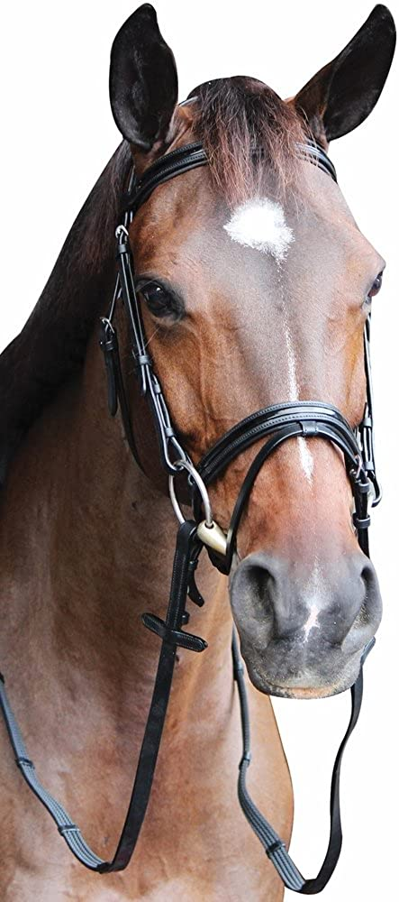 Henri de Rivel Piaffe Mono Crown Bridle w//Flash Nose Band and Patent Leather