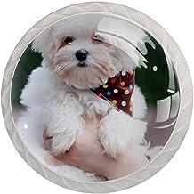 Lade Handgrepen Trek Decoratieve Kast Knoppen Dressoir Lade Handvat 4 Pcs,Dierlijke Hond Maltese Wit Pluizige Kleine Puppy...