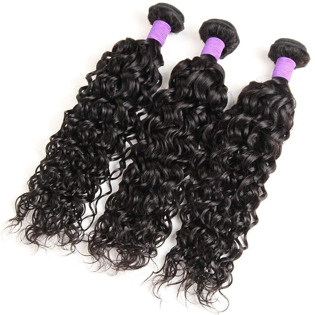 細菌廃止音楽を聴くYrattary 未処理のバージンブラジルの水髪織りバンドル、100%人毛エクステンション100 g/バンドルナチュラルカラー女性複合かつらレースかつらロールプレイングかつら (色 : 黒, サイズ : 12 inch)