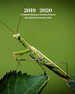 2019 - 2020 | 18 Month Weekly & Monthly Planner July 2019 to December 2020: Praying Mantis Insects Nature  Vol 26 Monthly Calendar with U.S./UK/ ... Holidays– Calendar in Review/Notes 8 x 10 in.