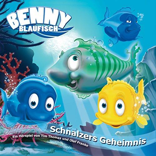 Schnalzers Geheimnis Titelbild