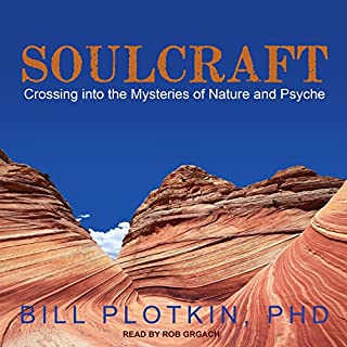 Soulcraft audiobook cover art