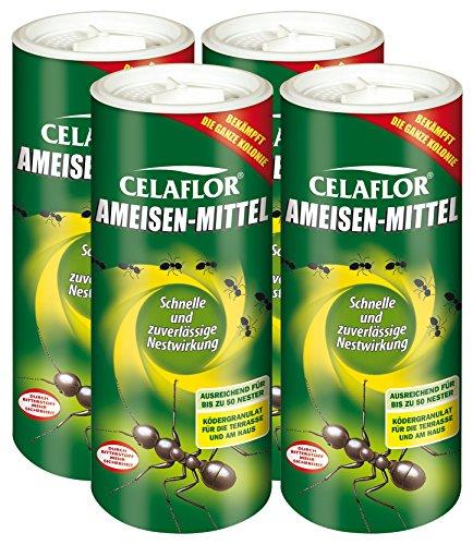 Celaflor -   Ameisen-Mittel -