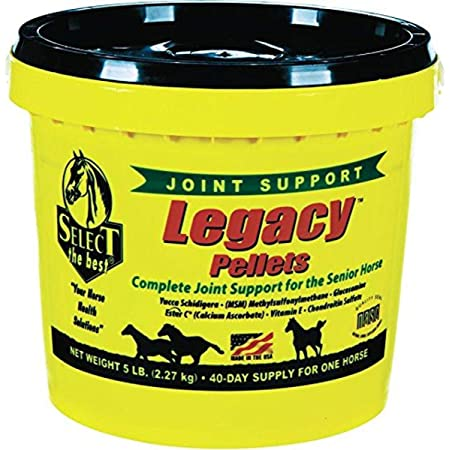 RICHDEL 784299540507 Legacy Pellets Joint Support for Senior Horses, 5 lb