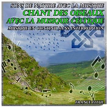 Sons de nature avec la musique: chant des oiseaux avec la musique celtique