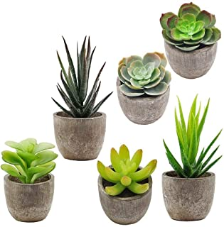 Supla 6 Pcs Assorted Potted Succulents Plants Decorative Artificial Succulent Plants..