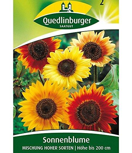 Quedlinburger Bunte Sonnenblumen, 1 Tüte Samen