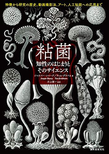 粘菌 知性のはじまりとそのサイエンス:特徴から研究の歴史、動画撮影法、アート、人工知能への応用まで