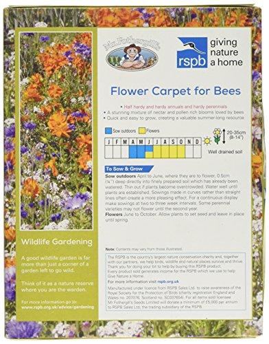 Mr Fothergill's RSPB Giving Nature Home Flower Carpet for Bees - Green