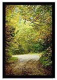 Tangletown Fine Art 27' x 39' Summers End Framed Photograph Print