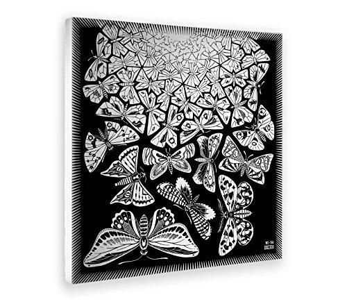 Giallobus - Cuadro - Impresion EN Lienzo - Escher - Mariposas - 50 x 50 CM