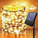 Anpro Cadena de luz solar para exteriores, 1 juego de 10 metros 100LED, 8 modos de iluminación, con energía solar IP65 a prueba de agua (blanco cálido)