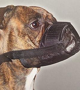 Muselière de sécurité pour chien réglable en nylon pour chien chiot Taille M anti mordre aboiements à mâcher pour chien Pet Masque Visage