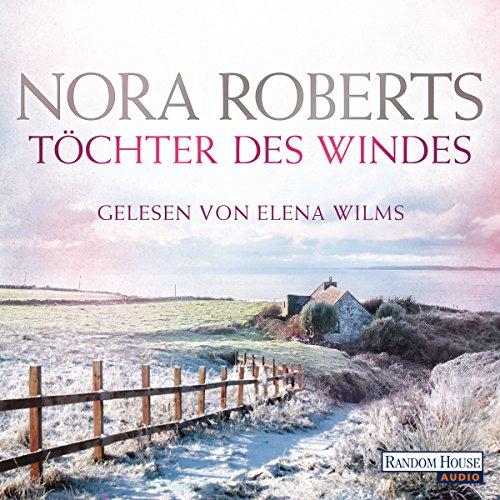 Töchter des Windes: Irland-Trilogie 2