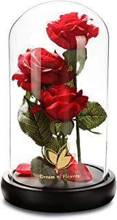 Beauty and The Beast Rose, Magic Rose Handmade to Create The Perfect Silk Rose and Glass Flower Rose Long Lasting Flowers Valentine's Mother's Day Birthday Present Christmas Forever Gifts
