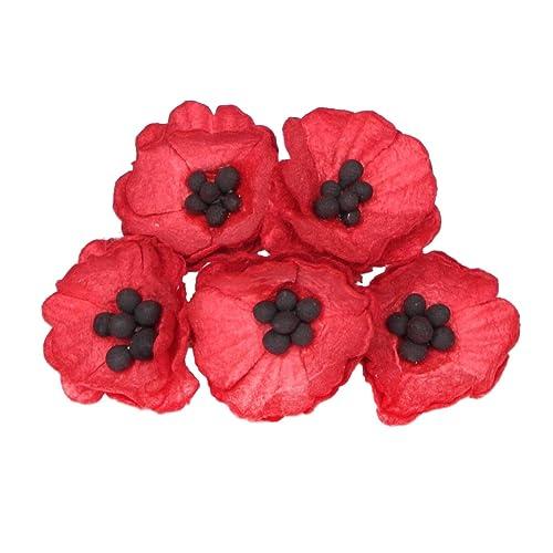 Poppies For Veterans Day Amazon