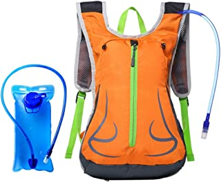 Rjj 20L Outdoor Travel Backpack Bicycle Motorcycle Riding Multi-Function Backpack Large Space Waterproof Wear-Resistant Breathable (with 2L Water Bag) Exquisite (Color : Orange)