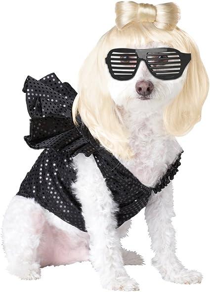 Beverly Hills Polo Club Dog Cat Dress Dog Cute clothes Dog dress