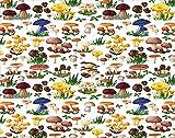 Y·JIANG Pintura de hongos por números, setas silvestres, setas orgánicas, pintura al óleo acrílica por números, para adultos, niños, decoración de la pared, 40,6 x 40,6 cm