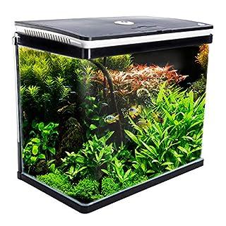 Dynamic Power Curved Glass RGB LED Fish Tank 52L (AQ-FT52L-BK) (B077YCG3T7)   Amazon price tracker / tracking, Amazon price history charts, Amazon price watches, Amazon price drop alerts