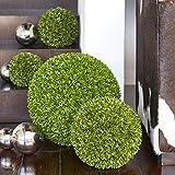 Klocke Kunstpflanzen Hochwertige & Künstliche Buchsbaumkugel - Standard Buchskugel: Ø 30cm - Naturgetreu & Wetterfest - Dichtes Blattwerk & Natürliche Farben - Premium (Indoor & Outdoor)