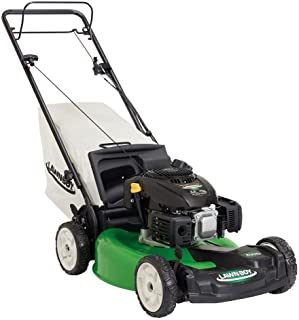Lawn-Boy 17739, 21 in. Variable Speed All-Wheel Drive Gas Self Propelled Mower