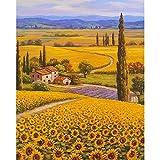 ZXDA Frameless DIY Pintura por número Flor Pintura al óleo Pintada a Mano Dibujo sobre Lienzo decoración del hogar A23 60x75cm