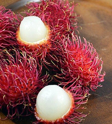 Fresh Rambutan Fruit (5lb)