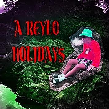 A Reylo Holidays