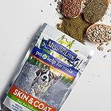 Pet Kelp Skin and Coat Formula Powder Antioxidant Supplement Dogs Cats 8oz - 6