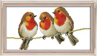 YEESAM ART New Cross Stitch Kits Advanced Patterns for Beginners Kids Adults - Three Birds - DIY Needlework Wedding Christmas Gifts (Bird E, White)