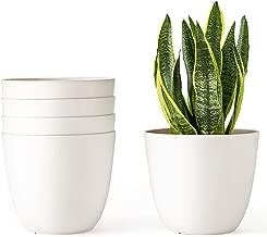 Best big plant pots cheap Reviews