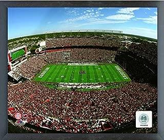Williams-Brice Stadium South Carolina Gamecocks Action Photo (Size: 17