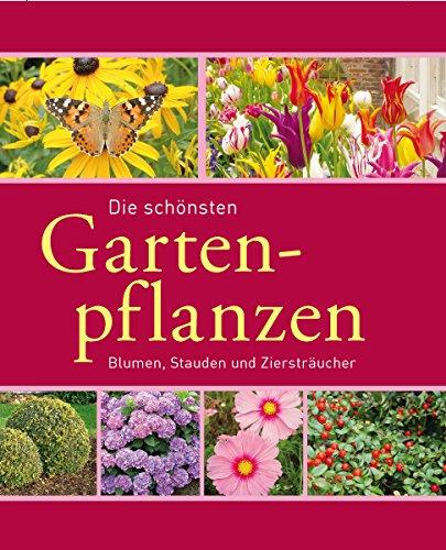 Die schönsten Gartenpflanzen: Blumen,...