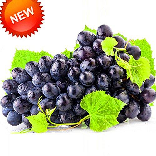 Les meilleures ventes! 100 PCS / Paquet 12 sortes de pépins de raisin Fruit avancée Graine naturel Croissance raisin sucré Kyoho Jardinage, # 6T7EXB