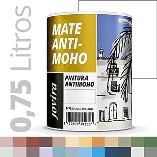 PINTURA ANTIMOHO, evita el moho, resistente a la aparición de moho en paredes, aspecto mate. (750ML, BLANCO)