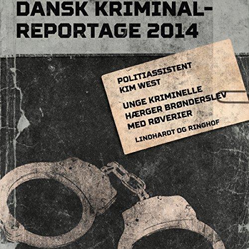 Unge kriminelle hærger Brønderslev med røverier audiobook cover art