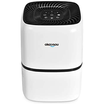 Okaysou AirMic4S Medical Grade Air Purifier for Home Allergies and Pets, Smokers, Odors, Dust, Pollen,VOCs, 4 Optional HEPA H13 Filters, Large Room Air Cleaner, 300 Sq. Ft. Perfect for Office, Bedroom