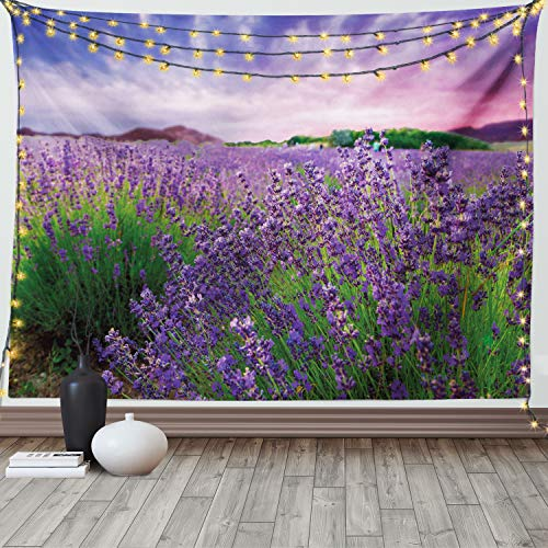 Ambesonne Lavender Tapestry, Serene Field View in Tihany Hungary Dramatic Dreamy Sunset Sky Nature, Wide Wall Hanging for Bedroom Living Room Dorm, 60' X 40', Pink