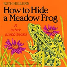 How to Hide a Meadow Frog and Other Amphibians (Reading Railroad)