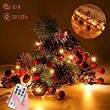 Xmas Garland Lights, 10 Feet 20 LED Red Berry with Pine Cone Garland Lights Battery Operated Garland Indoor Outdoor Garden Gate Home Xmas Decoration Lights for Winter Holiday Decor