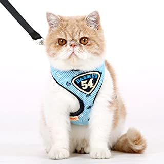 70fffb1c89c3 Amazon.com: harness for cats with leash: Home & Kitchen