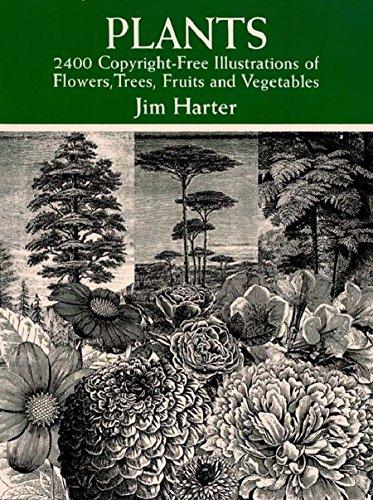 Plants: 2,400 Royalty-Free Illus...