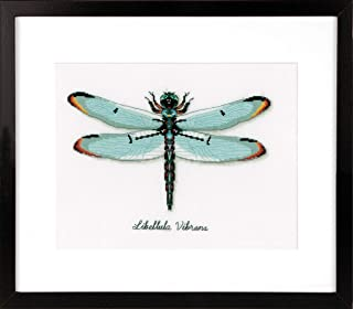 Vervaco Dragonfly, Polyester Cotton, Assorted, 40 x 2 x 20 cm