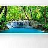 LANA KK Vlies Fototapete Tapete Poster, Amazonas in 420 x